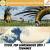 T11E10. Top dinosaurios 2019 | Tsunamis