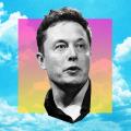Elon el Troll