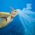 01 El coste de limpiar los océanos.